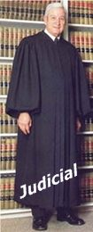 Judicial robes, Wedding Officiant and Magistrate Robes